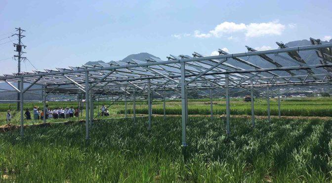 【9月9日】営農優先のソーラーシェアリング説明会@JA塩田